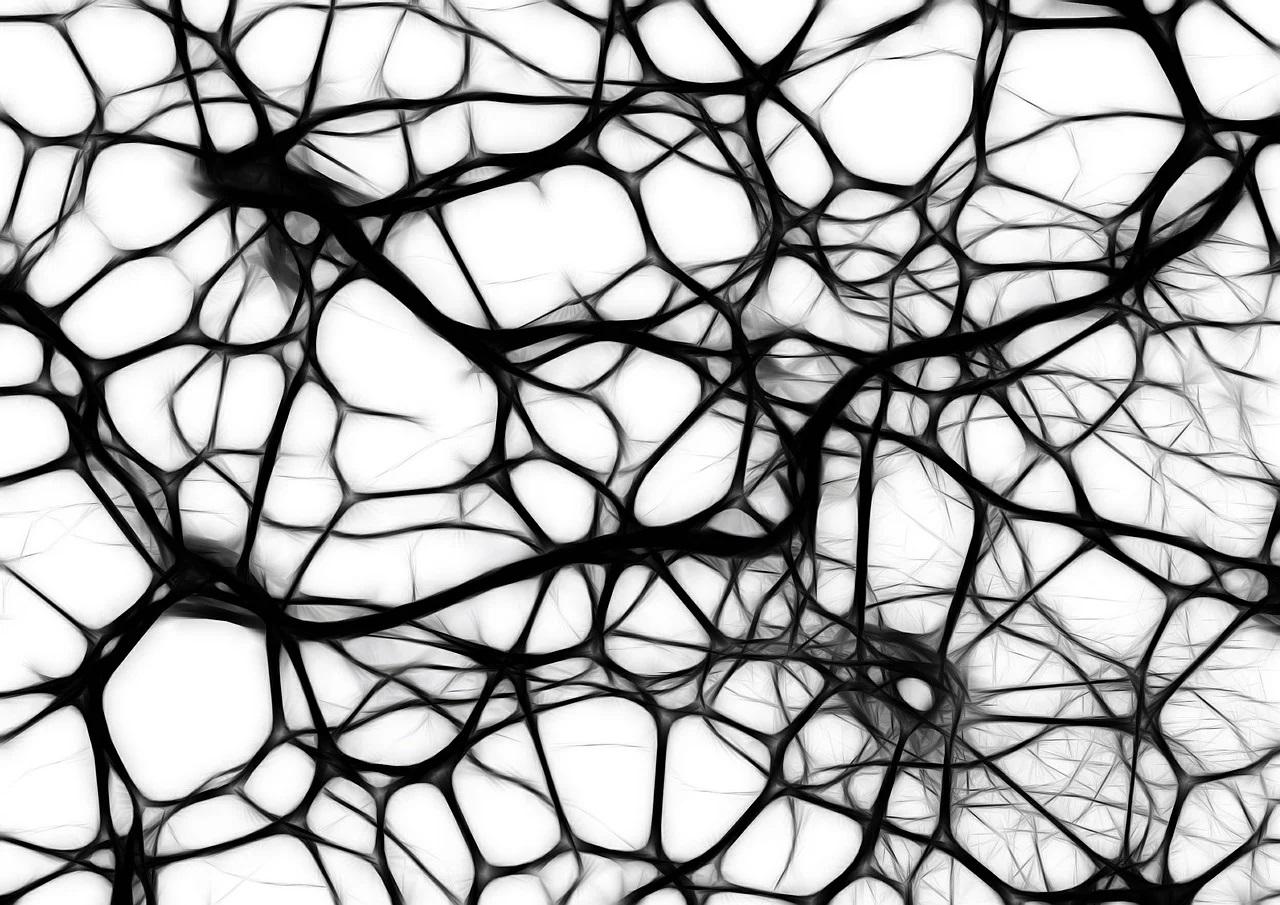 Quel est l'intérêt de la stimulation du nerf vague ?